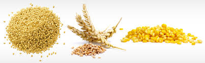 Agric-commodities6-Copy-Copy