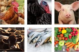 foodcommoditiesx4