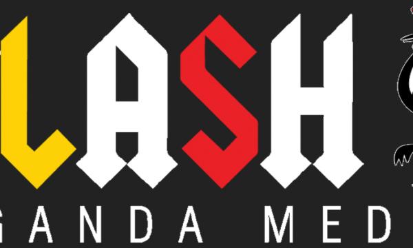 FLASH-544x180px